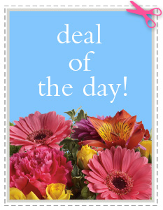 Deal of the Day in Wilmington NC, Tasteful Creations and Floral Events